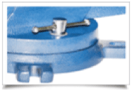 vise with fixed and swivel base